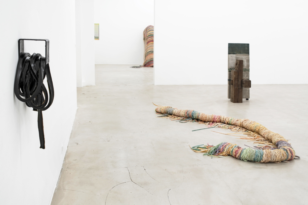 Cäcilia Brown, Christoph Meier, Liesl Raff, curated by Peter Pakesch, exhibition view, Nikolas Krupp, Basel, 2019