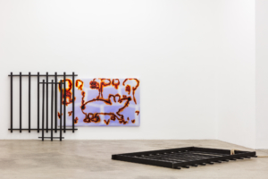 Hadi Fallahpisheh and Kyle Thurman, CATFISH, installation view, Sophie Tappeiner, 2020